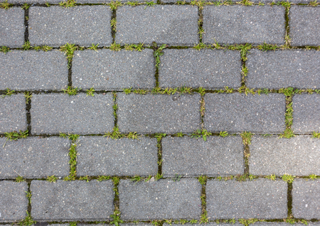 the grass grows through the concrete tile pattern texture background Stock Photo