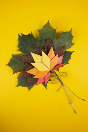 Fallen colored leaves autumn concept traditional paper craft art origami topshot on yellow background