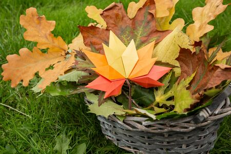 Autumn concept background traditional paper craft handmade origami fallen maple leaves in crafted basket nature Colorful backround image perfect for seasonal use 写真素材