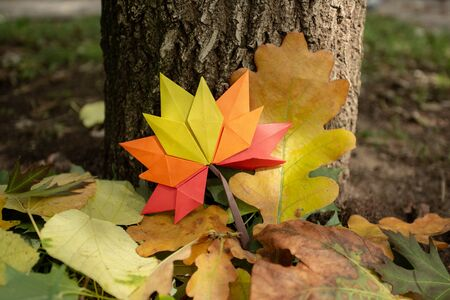Autumn concept background on tree traditional paper craft handmade origami fallen maple leaves nature Colorful backround image perfect for seasonal use 写真素材