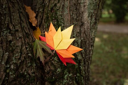 Autumn concept background traditional paper craft handmade origami fallen maple leaves nature Colorful backround image perfect for seasonal use