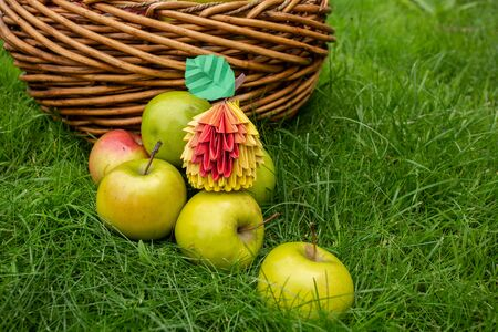 Apple harvest background, wicker basket on green grass, top view papercraft origami art with red berries