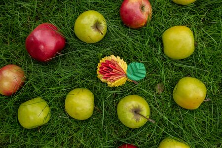 Apple harvest background, wicker basket on green grass, top view papercraft origami art autumn concept