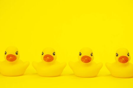 Four Yellow Rubber Ducks in Row isolated on yellow background copy space.