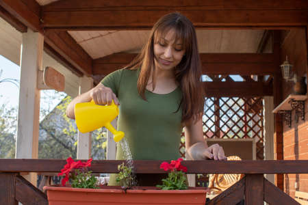 Attractive smiling brunette girl dressed casually watering petunia flower in pot on veranda of country house rustic style on nice sunny day. gardening concept. floristry concept
