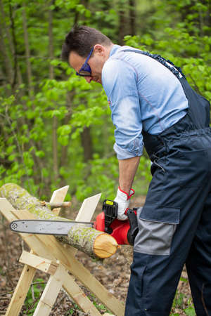 Lumberman in protective safety workwear works with chainsaw and sawing a tree in the forest. Sawing chain in motion. Hard wood working in forest