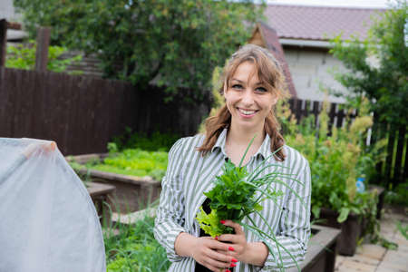 Young beautiful female farmer holding fresh herbs greens from little garden on backyard, home organic eco products, happy woman gardener looks at camera with harvest - green leek, lettuce, parsley
