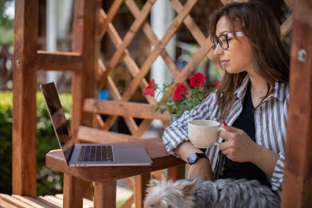 Stylish brunette girl with york dog looks at laptop communicating in social network drinking coffee on background of wooden pergola grid. distance working concept. Study and work at summer outdoors