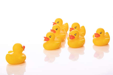Command concept. One yellow rubber duck stand in front of wedge of ducklings isolated on white background. Dictator, ruler, big brother, captain, dependence, subordination, supervisor, instructor