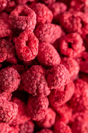 Macro shot of freeze dried organic raspberries, raw delicious snack, cooking baking ingredients. Red berries background. Natural sugars, healthy food, fresh fruits, mindful eating concept, text space