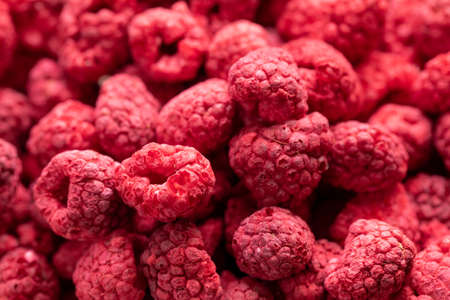Macro shot of freeze dried organic raspberries, raw delicious snack, cooking baking ingredients. Red berries juicy summer background. Natural sugars, healthy food, fresh fruits concept, text space Archivio Fotografico