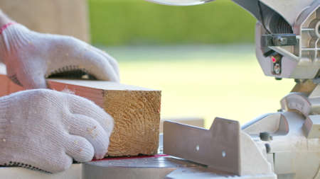 carpenter in protective gloves precisely sets wooden workpiece into mitre saw and mitres bar. Circular saw blade in motion, pine sawdust flying. fine annual rings on wood appear under saw Archivio Fotografico