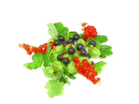 Berry mix- red and black currant, with leaf on white background. Top view. Isolated. photo