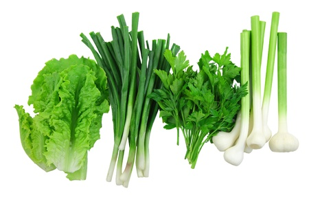 Vegetable-young onion, garlic, parsley and letucce. Isolated. photo