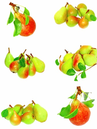 Collection (set) of pears with stem and green leaf. Isolated over white. photo