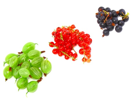 Heaps of berry mix- red and black currant, gooseberry. Isolated. photo