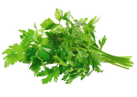 spice isolated: Fresh parsley on white background. Isolated over white