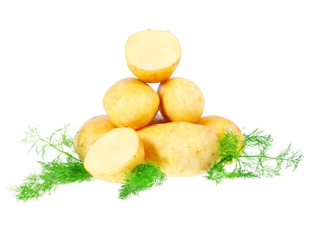 Young potatoes, decorating of dill . Isolated over white photo