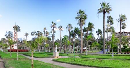 alexandria egypt: Montaza park on Montaza Palace area, in Alexandria, Egypt. Panorama.