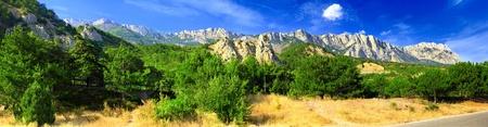 rocky mountain juniper:  South part of Crimea peninsula, mountains  Ai-Petri  landscape. Ukraine. Stock Photo
