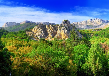 rocky mountain juniper:  South part of Crimea peninsula, mountains  Ai-Petri  landscape. Ukraine. Stock Photo