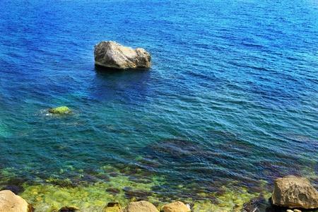 rocky mountain juniper: Landscape  on Black Sea beach. Crimea, Ukraine Stock Photo