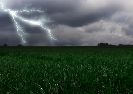 thundering: Lightning across the countryside field. Summer Stock Photo