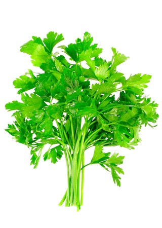 Fresh parsley on white background. Isolated over white photo