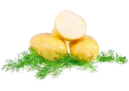 eyespot: Young potatoes, decorating of dill . Isolated over white