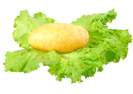 Young potatoes, decorating of lettuce . Isolated over white Stock Photo - 11895248