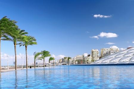 alexandria egypt: Alexandria city , urban view, Egypt.