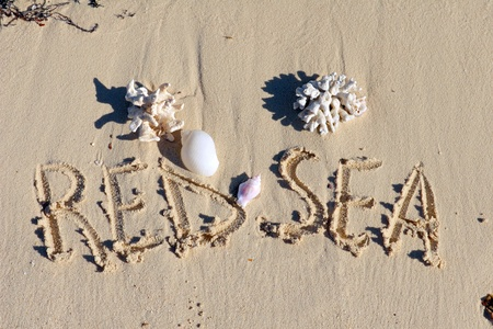 "Inscription ""Red Sea "" on a sand with shells n a beach."