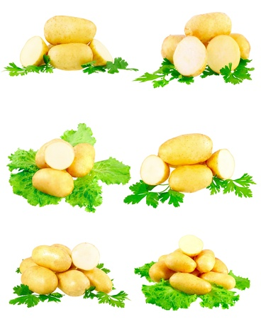 eyespot: Collection(set) of young potatoes, decorating of parsley . Isolated over white Stock Photo