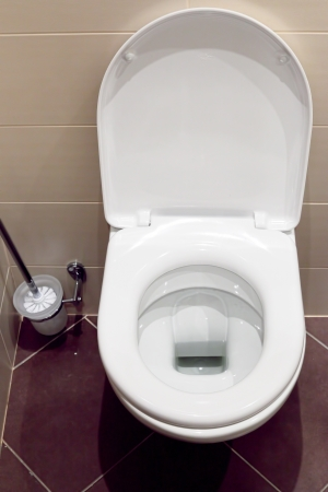 Interior of a typical water-closet with brush Stock Photo - 14473214