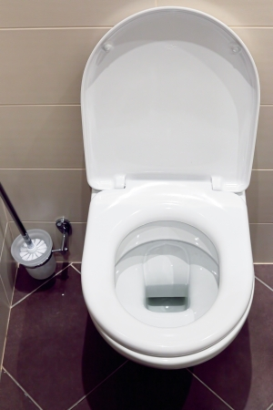 watercloset: Interior of a typical water-closet with brush