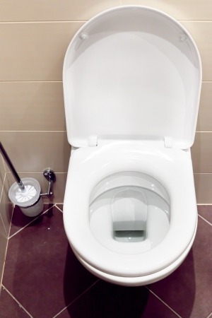 Interior of a typical water-closet with brush photo