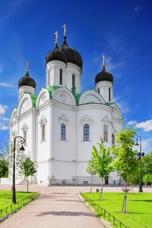 Russian Church in Pushkin, St. Petersburg. Russian Stock Photo - 14714117