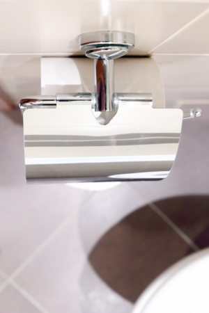 Roll of toilet paper holder in the toilet