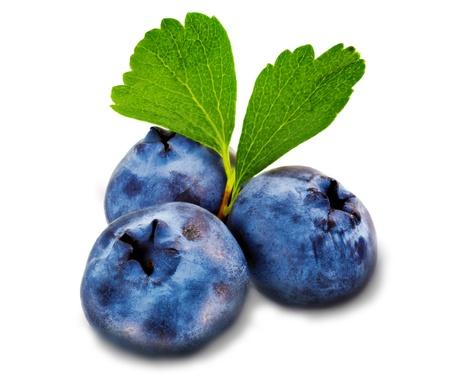 leafage: Three fresh blueberry isolated on white background