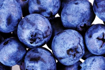 Lot of blueberrys  isolated on white background  photo