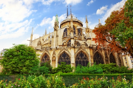Notre Dame de Paris Cathedral, garden with flowers.Paris. France photo