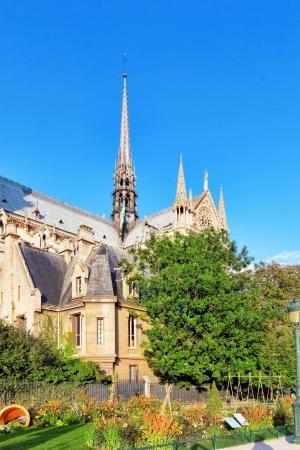 dam square: Notre Dame de Paris Cathedral, garden with flowers.Paris. France