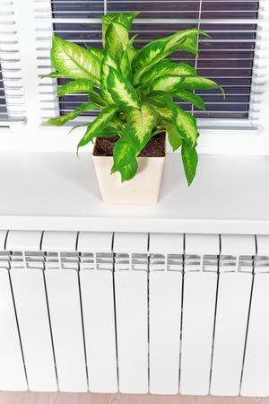 bimetallic: Heating white radiator radiator with flower and window