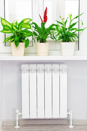 bimetallic: Heating white radiator  with flower and window