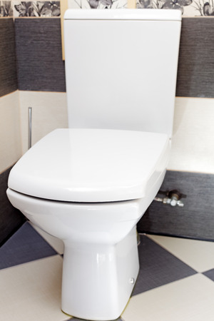 watercloset: Interior of a typical water-closet