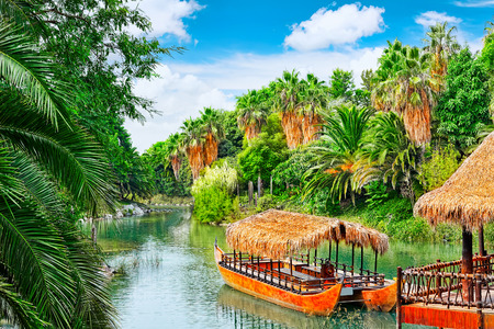 humid: Beautiful landscape of humid tropical jungle. Tropic