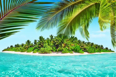 equatorial: Whole tropical island within atoll in tropical Ocean. Uninhabited and wild subtropical isle with palm trees. Equatorial part of the ocean, tropical island resort.