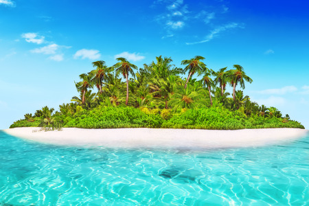 subtropical: Whole tropical island within atoll in tropical Ocean. Uninhabited and wild subtropical isle with palm trees. Equatorial part of the ocean, tropical island resort.
