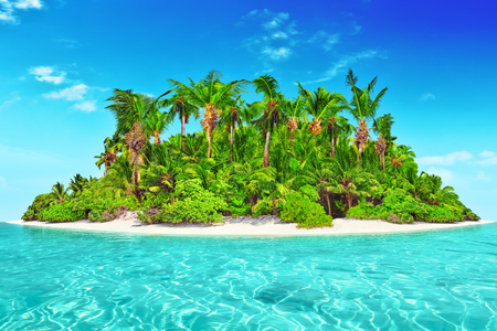 atoll: Whole tropical island within atoll in tropical Ocean. Uninhabited and wild subtropical isle with palm trees. Equatorial part of the ocean, tropical island resort.