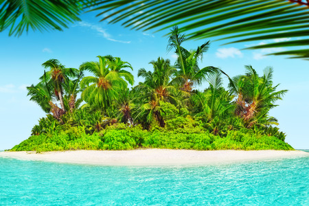 uninhabited: Whole tropical island within atoll in tropical Ocean. Uninhabited and wild subtropical isle with palm trees. Equatorial part of the ocean, tropical island resort.